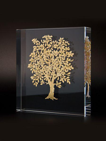 Collezione alberi: quercia
